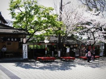 Shiyomizu Dera, Cherry Blossom, Kyoto, Japan