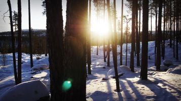 Lapland 5