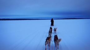 The Lapland Adventures