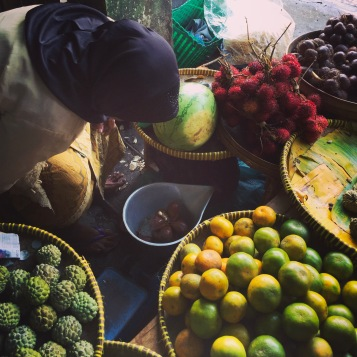 Many tropical fruits!