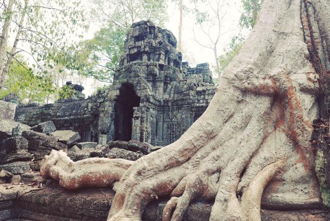 Temple 5c
