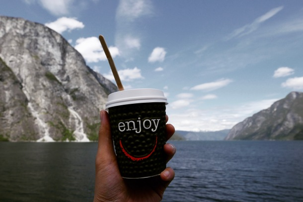 Sognefjord, Norway 3