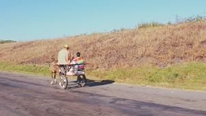 Cuba Vinales Valley 21