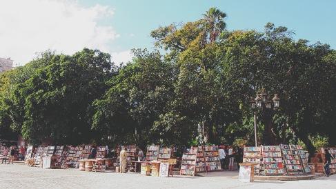 Havana Market 7