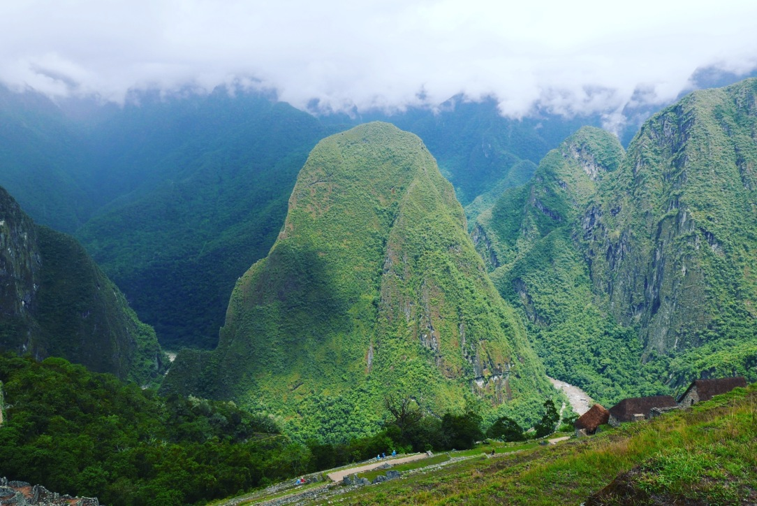 Machu Picchu - 14