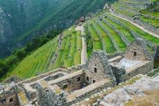 Machu Picchu - 15