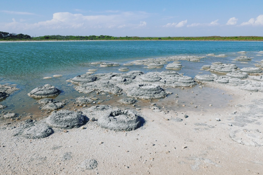 Lake Thetis 1