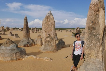 The Pinnacles 4