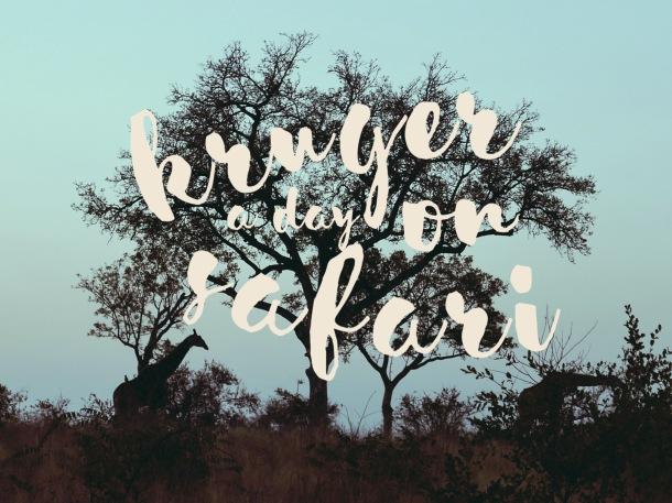 A Day on Safari - Cover 2