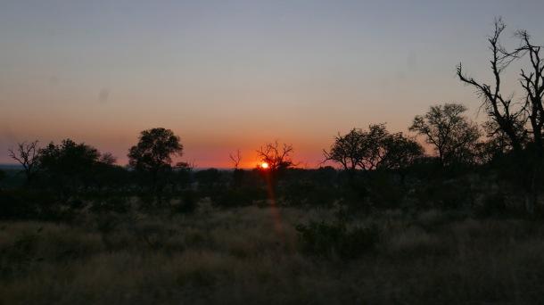 South Africa, Kruger - Safari Sunrise
