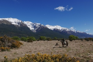 Quenstown, New Zealand, Horse Riding: Exploring the beautiful landscape and find out the top things to do in Queenstown. Queenstown is probably (well, I am almost certain of it) the most beautiful city that I have been to, period.