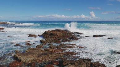 Cape of Good Hope 21