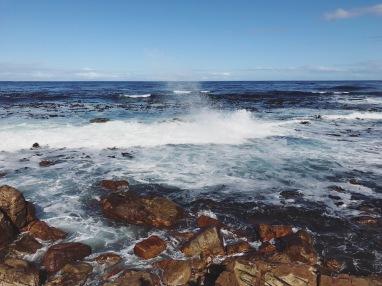 Cape of Good Hope 4