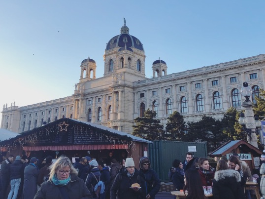 Europe Christmas Market - Vienna 5