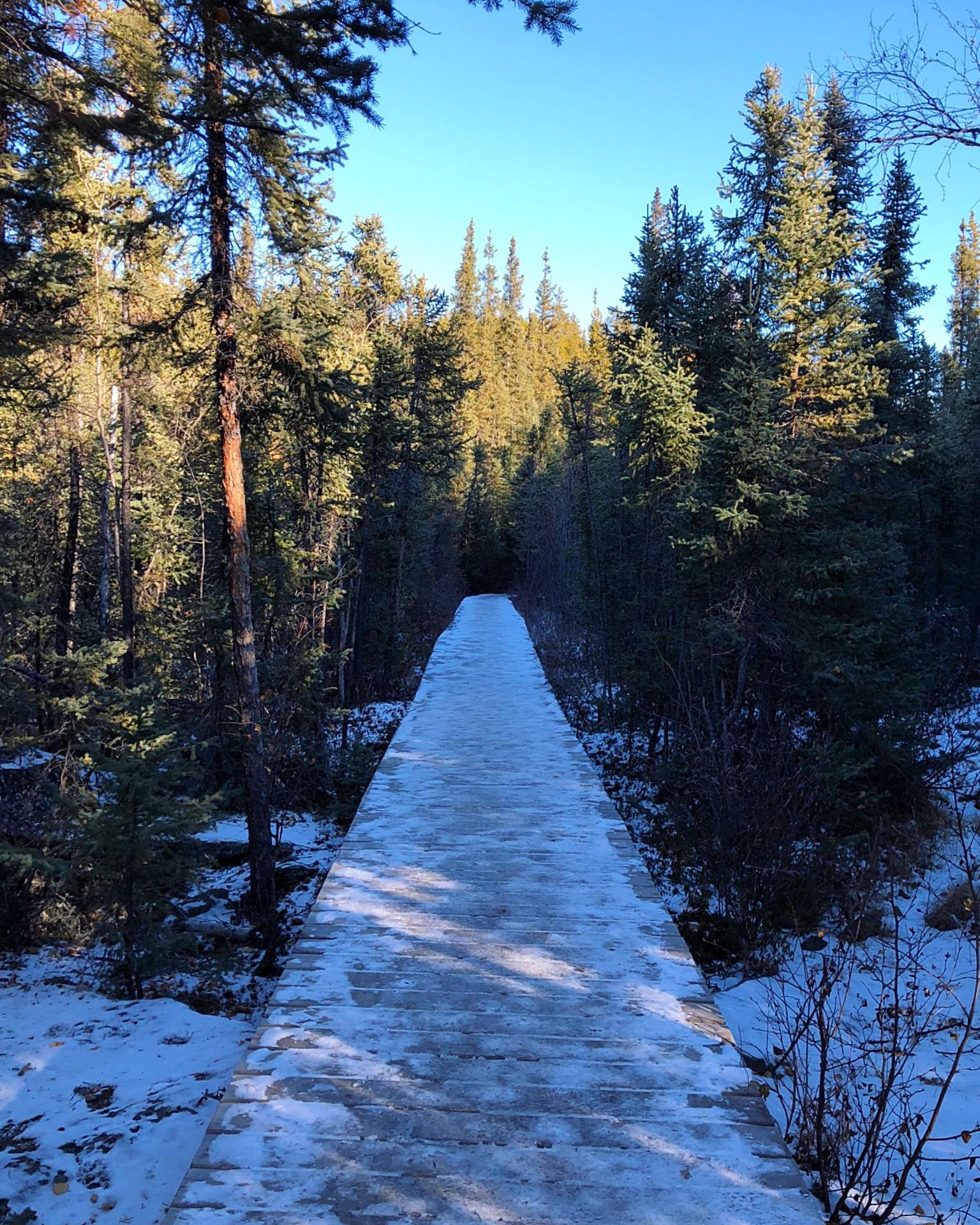yellowknife ingraham trail - 1